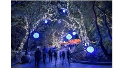 Conheça o Projeto Luzes de Natal do Amigos do Turismo e Faça Parte dessa Iniciativa